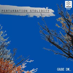Perturbation Stolidity cover